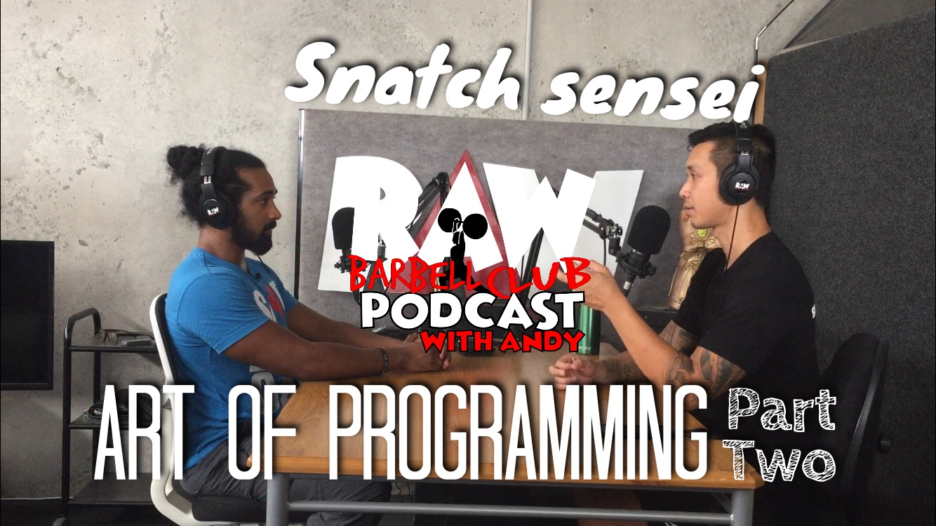 Art Of Programming : The Nuanced Touch with Snatch Sensei